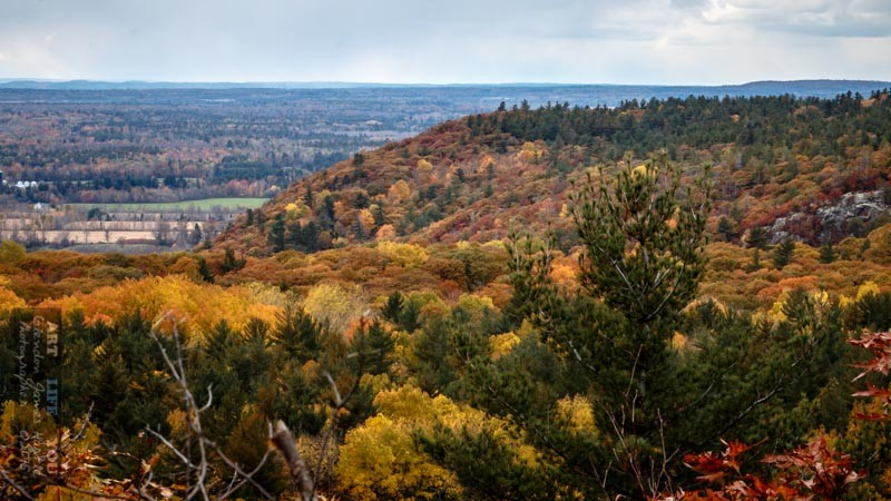 Time Out Hiking ~ The Escarpment (5 images)