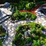 The garden ~ a work in progress