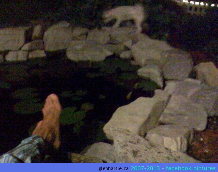 21:00 ishA glass of wine in the garden