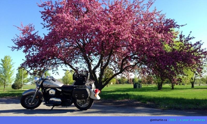 Detour: biker's privilege
