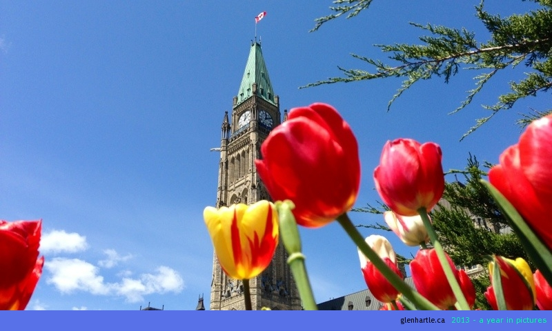 More icons of Ottawa ~ The Peace Tower and Tulips