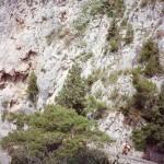Throwback Thursday - artsy in Capri circa 1993