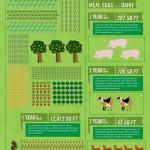 How big a garden do you need?