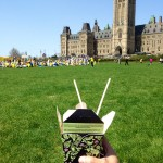 Lunch on the lawn at Parliament Hill ~ benefit of living in Ottawa. I Won't get many more chances to do this...