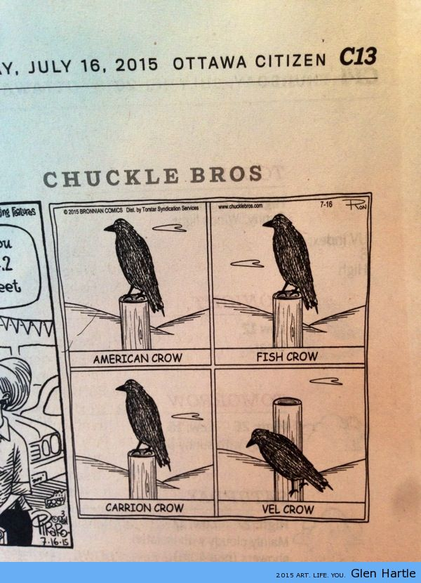 Farm humour…