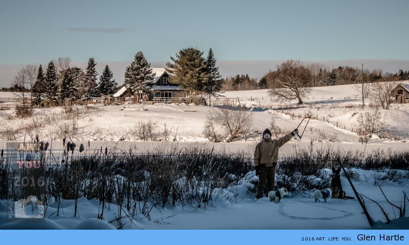 The Christmas Tree Hunt ~ from the Moffat Lake gang