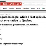 Globe and Mail --> you have undermined your credibility