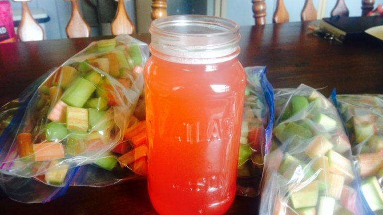 Um – YUMMY! Rhubarb syrup :)