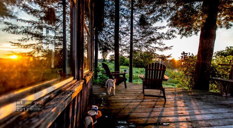 The Stoop At Dawn.
