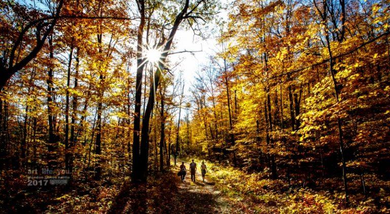 Gatineau Park – 12.4 km hike in sunshine