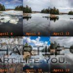 From ice back to lake ~ April 21, 2020