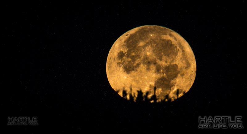 Awoooooooooooo! The Hunter's Blue Moon