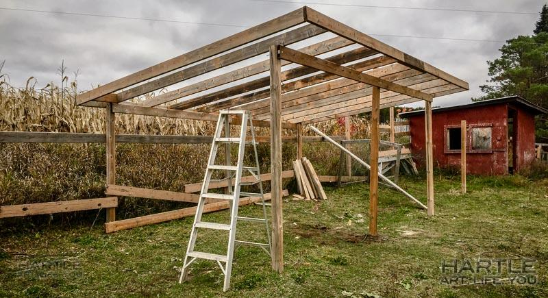 Long and short: the beginnings of a new shed