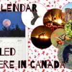 There's still time!! Looking to put a smile on someone's face? 12 months of Canadian Nature!!