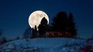 Awooooooooooooooooooooo!! (The Wolf Moon)
