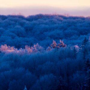 Dawn blushed this morning.