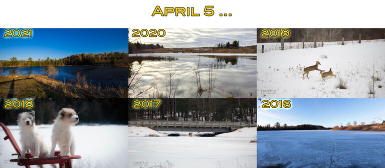 Taking as many photos as I do sometimes affords me historical perspective … Mother Nature seems in a hurry this year