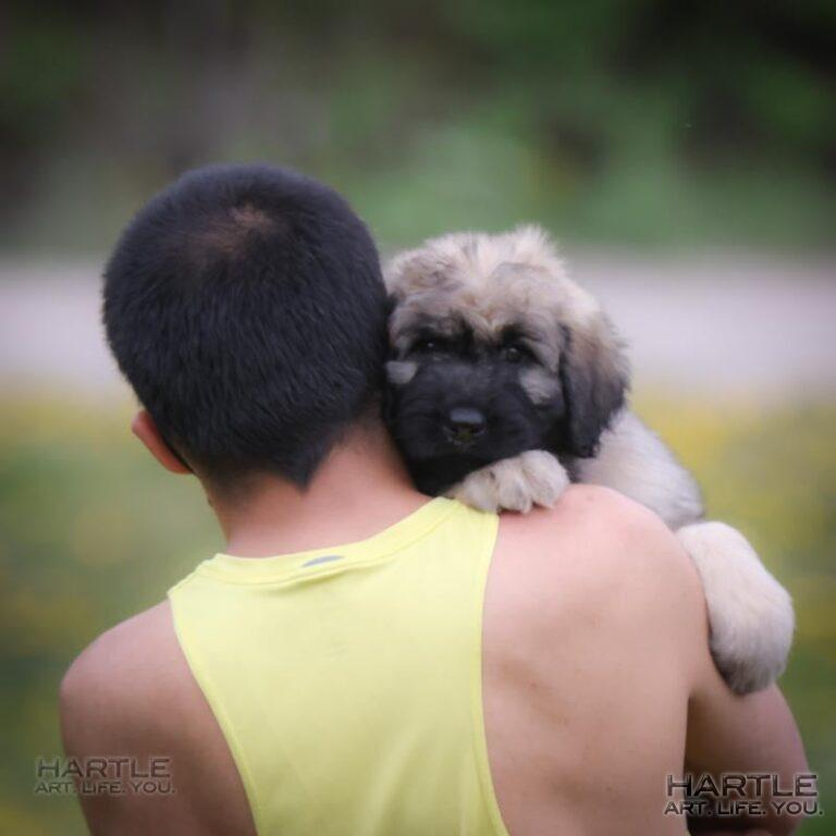 It was really fun today at 's watching a puppy meet his new papa and head off to his new forever home.